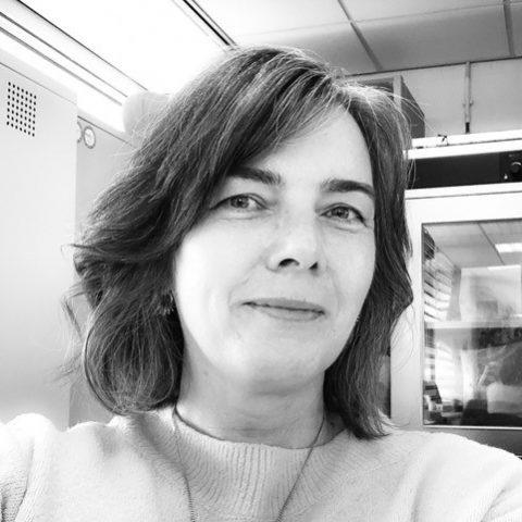 Trustee: Anette Ollerearnshaw